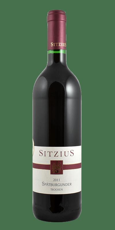 Spätburgunder Qualitätswein trocken